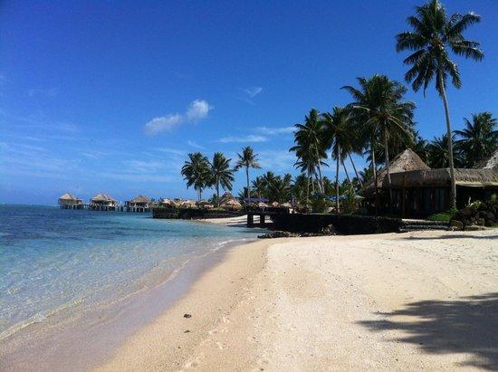 Coconuts Beach Club: Paradise!