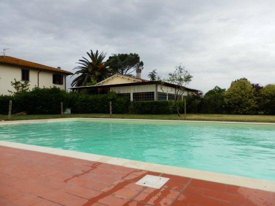 Airone Pisa Park Hotel : Piscina.