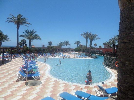 Occidental Jandia Mar : Pool