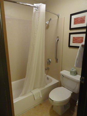 Comfort Inn: Shower area
