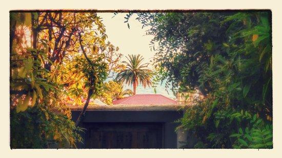 Casa Laguna Hotel & Spa : Enhanced view from courtyard over gate towards ocean