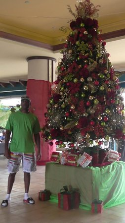 Hilton Barbados Resort: Beautiful Christmas tree