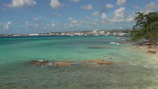 Hilton Barbados Resort : Beautiful view