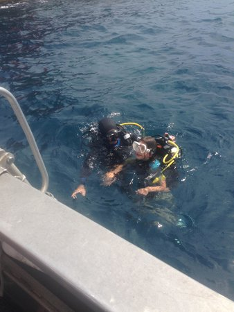 Easy Dive : First Dive