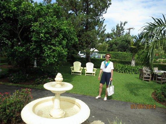 Royal Palms Hotel: Hotel Garden