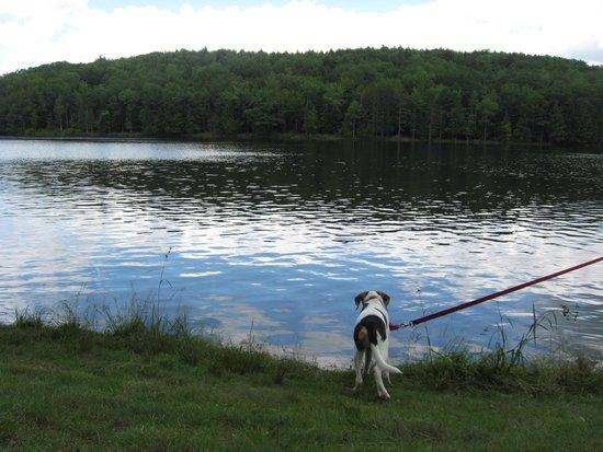 Gilbert Lake State Park張圖片