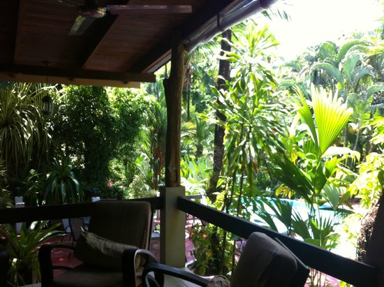 Falls Resort at Manuel Antonio: view from lobby of grounds