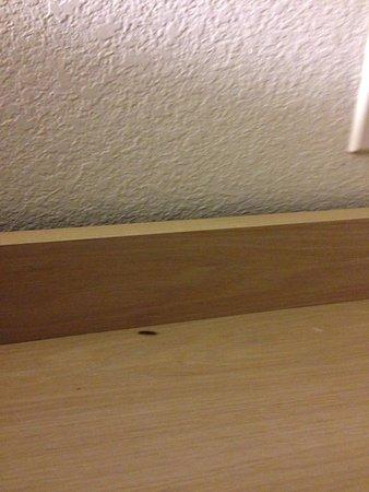 Motel 6 Lansing: bug I found