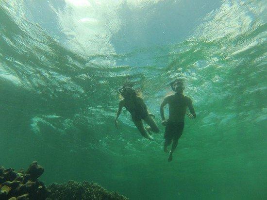 Fish Tobago Tours: buccoo reef