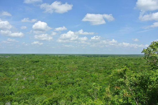 Coba Mayan Traditions: View from the top