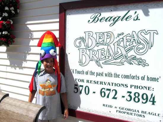 Beagle's with a crazy Knoebel's squid hat - Picture of ...