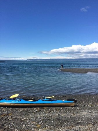 Kachemak Bay Wilderness Lodge: Fishing spot