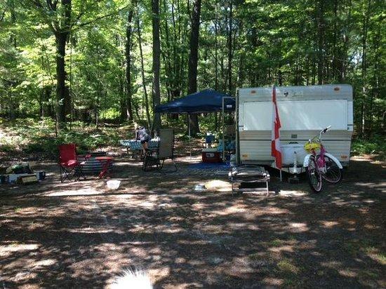 Albert E. Sleeper State Park: Our campsite - site 72