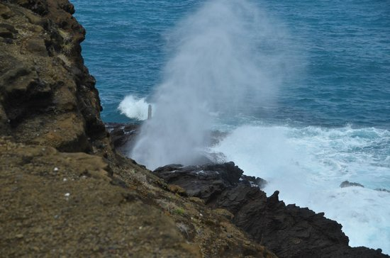 Aloha Private Tours: Halona Blow Hole