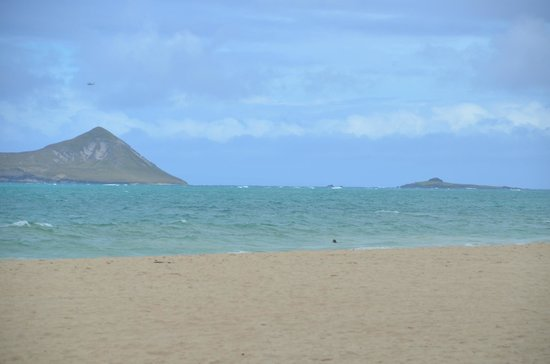 Aloha Private Tours: Along the Eastern Shoreline