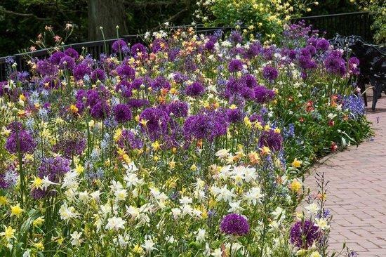 Longwood Gardens: Peony Garden