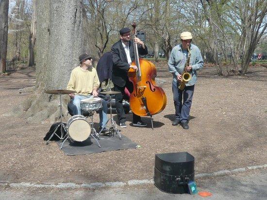 Central Park: Músicos do parque