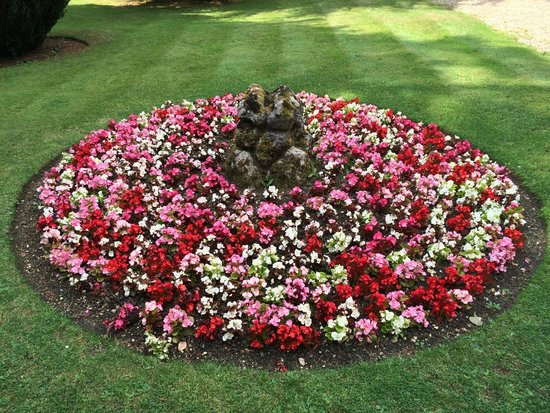 Mercure London North Watford Hunton Park Hotel : Beautiful flower beds