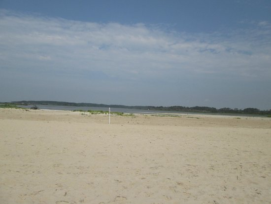 Assateague Beach : View from the beach