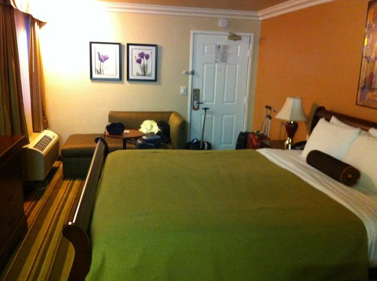 Americas Best Value Inn & Suites - San Francisco Airport : Hab