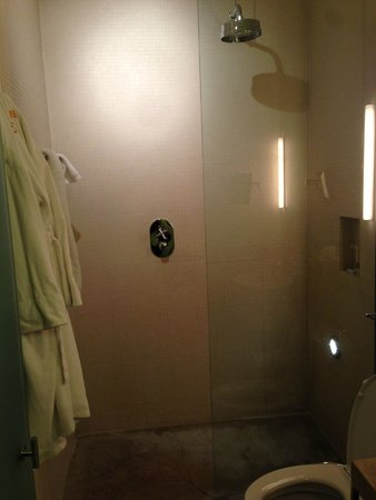 Chambers Hotel: Shower has no door and some of the water got out but that really wasn't a problem