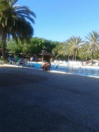 Dunes Hotel & Beach Resort : Una sra limpiandole el pupu a un bebe en la piscina