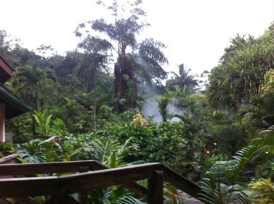 Tabacon Hot Springs: steam