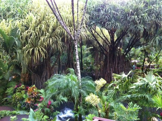 Tabacon Hot Springs: grounds