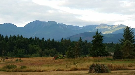 Port Angeles KOA: The view from the parking lot!