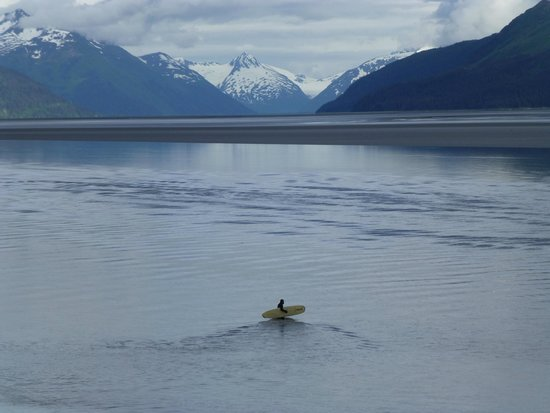 Bore Tide in Turnagain Arm: Going to Surf the Bore Tide.