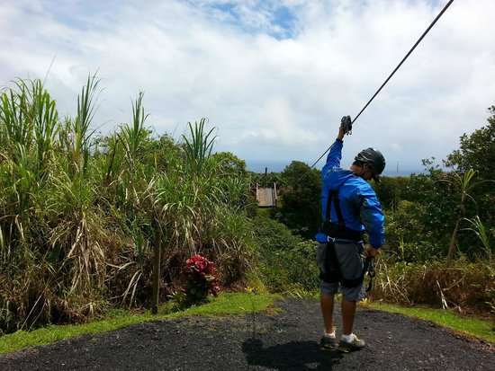 Skyline Eco Adventures - Akaka Falls: One of the first few zip lines to get you in the mood and comfortable in the gear.