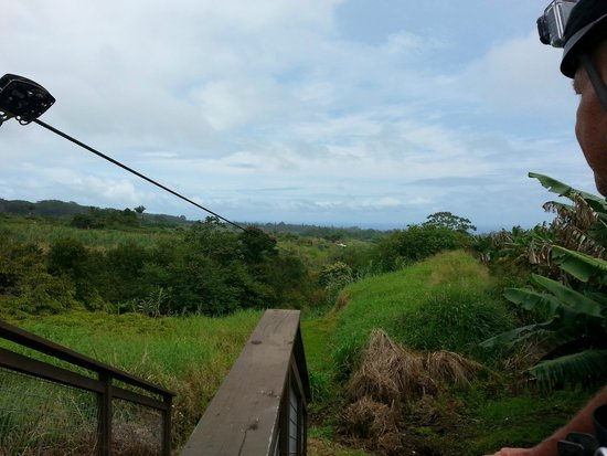 Skyline Eco Adventures - Akaka Falls: That's where we are going!  Down there someplace.