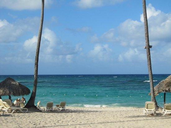 Majestic Elegance Punta Cana : The beach