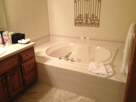 Bridgeport Resort : Filthy tub