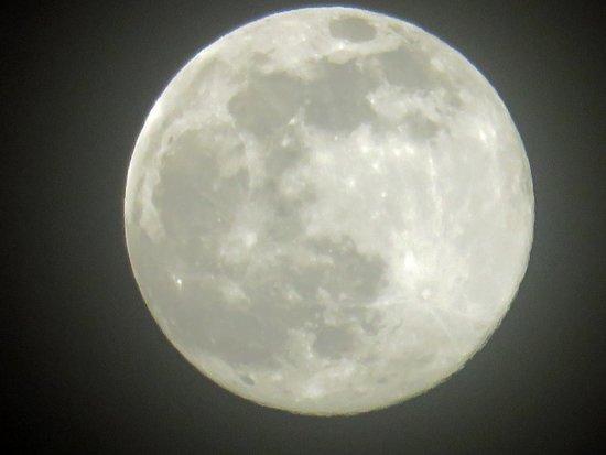 The Westin Golf Resort & Spa, Playa Conchal: Gorgeous moon!