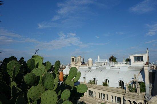 Holiday Inn Paris - Notre Dame: vista terraço