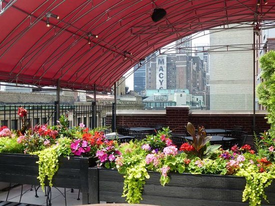 Hotel Metro: Rooftop
