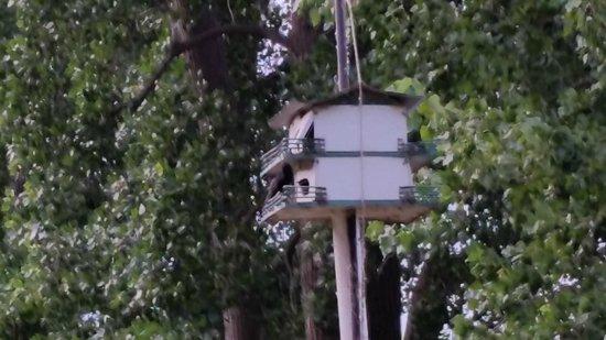 Pelee Places: Neighbor's bird house