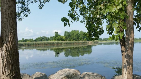 Pelee Places: Across the street