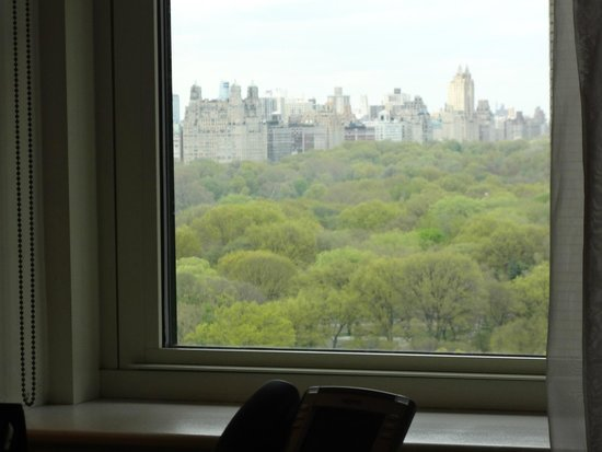The Plaza: Central Park from our window (16th floor)