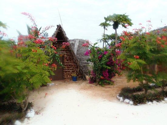 Zanzest Beach Bungalows: giardino