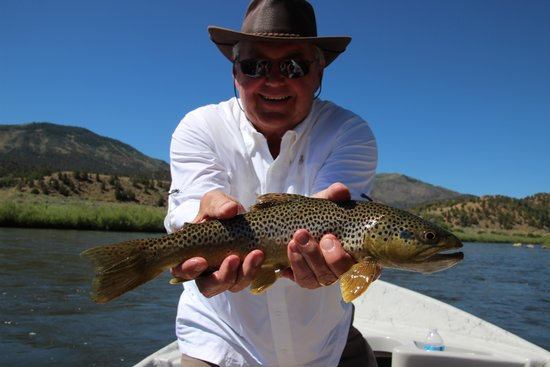 Cutthroat Anglers: Nice brown