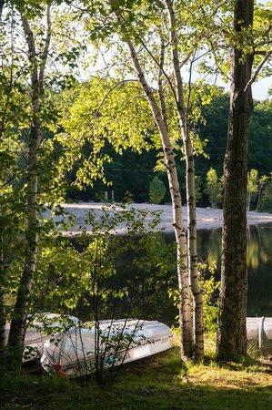 Otter Lake Camp Resort: Early Morning at Otter Lake