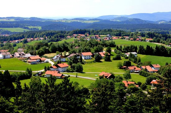 Baumwipfelpfad: View From The Top