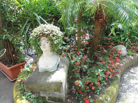 Hotel Palazzo Murat: jardines
