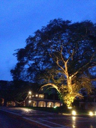 JW Marriott Panama Golf & Beach Resort : Entrada al Hotel