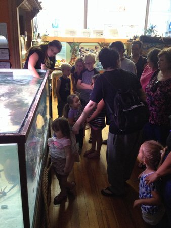 Team ECCO Ocean Center & Aquarium: Time to feed the fish. No children were harmed in the process.