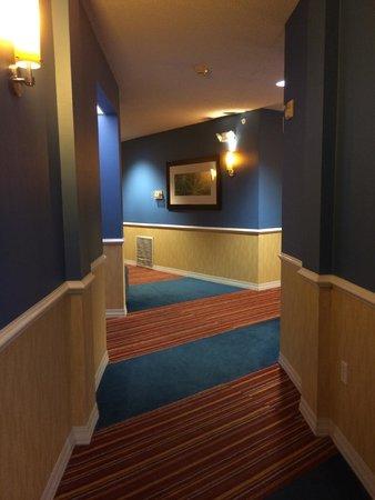 Hotel Indigo San Antonio Riverwalk: Funky hallways