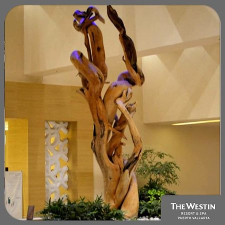 The Westin Resort & Spa Puerto Vallarta: Egrégora