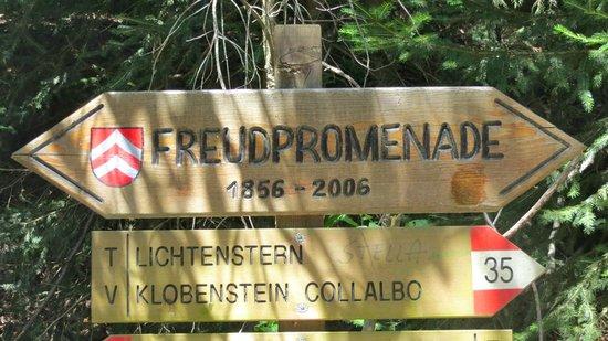 Soprabolzano, Италия: Freudpromenade